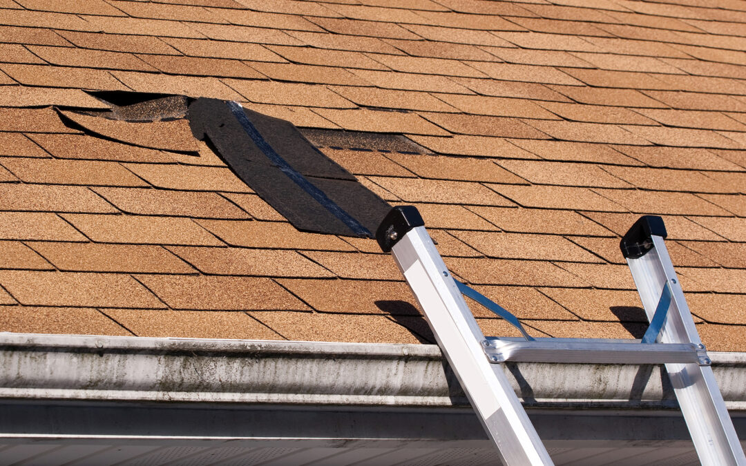 Using your tax refund to replace and/or repair your roof will not only add value but will protect the interior structure.